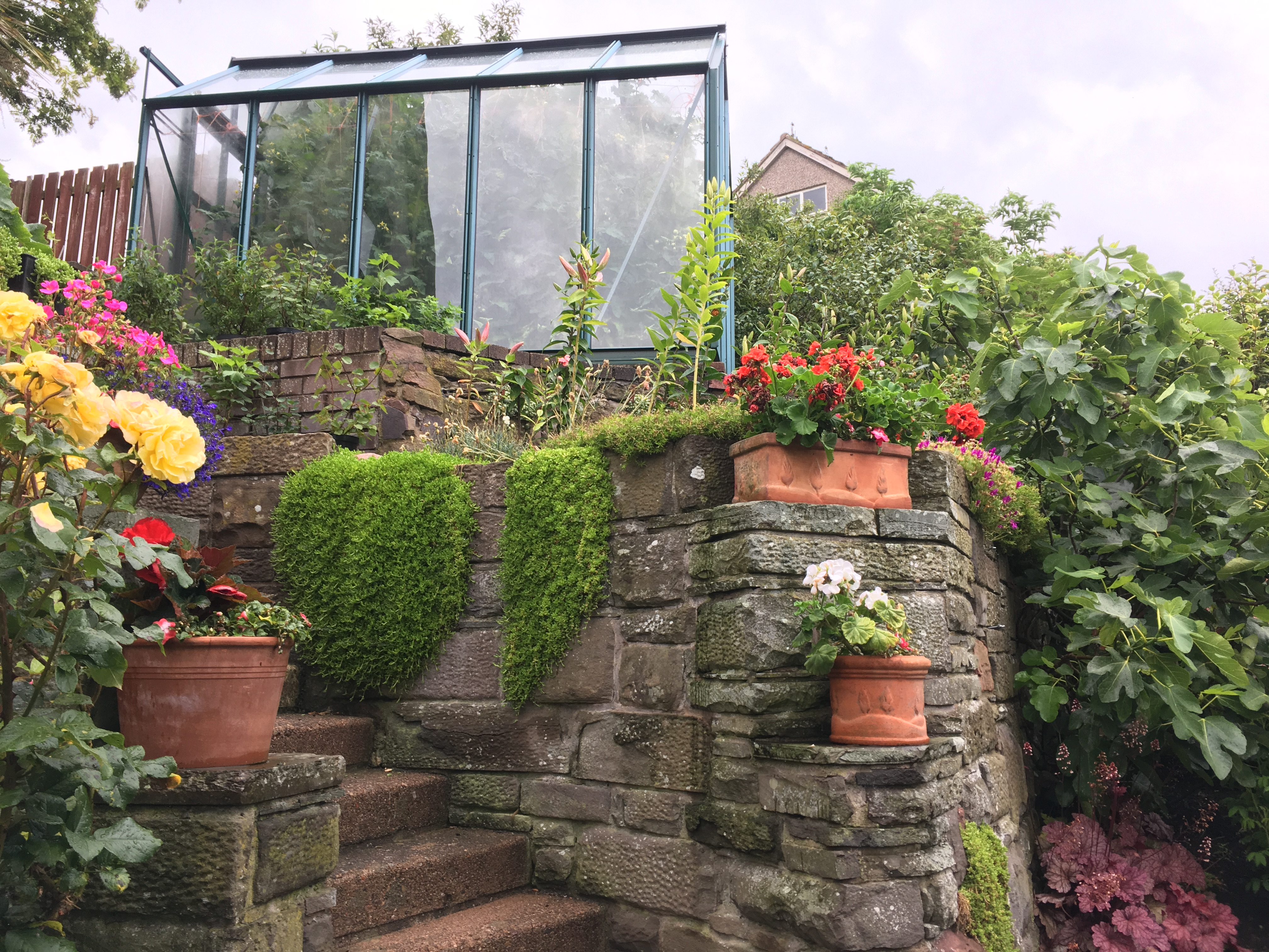Category 5 - Front Garden or Entrance 2019 | Dundee City ...