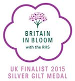 UK Finalist 2015 Silver gilt Medal