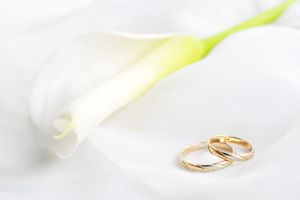 Lily and wedding rings