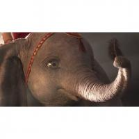 Relaxed: Dumbo Image