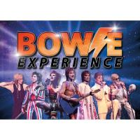 Bowie Experience Image
