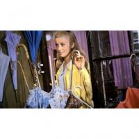 The Umbrellas of Cherbourg Image