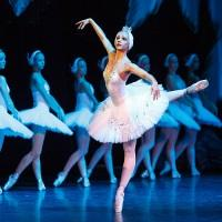 The Russian State Ballet - Swan Lake Image