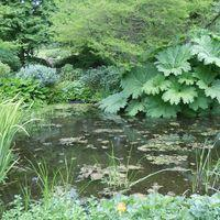 University of Dundee, Botanic Gardens Image
