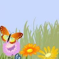 Butterfly Event Image