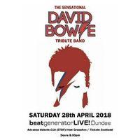 David Bowie Tribute Band Image