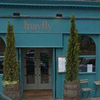 Mayfly Image
