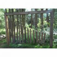 Public Art Recording Session - Botanic Garden / Ninewells / Technology Park Image
