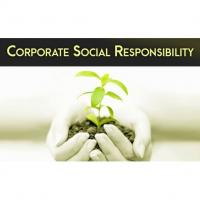 What Does CSR Really Mean to Business? Image