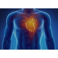 Cardiovascular Disease: Go With the Flow Image