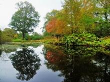 Camperdown Park Pond