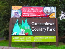 Entrance to Camperdown Country Park
