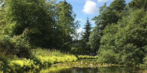 Dundee Biodiversity Action Plan launched Image