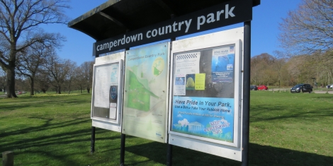 Car Park Work at Camperdown Starts Image