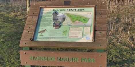 Larks re-ascending at Riverside Nature Park Image