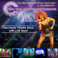 The Tina Turner Experience Image