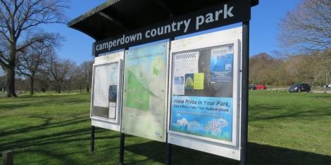 Improvement works set for parking facilities at Camperdown  Image