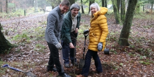 Plant a tree in Dundee Image