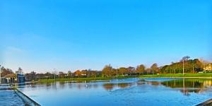 Lower Stobsmuir Pond Blue-Green Algae Alert Image